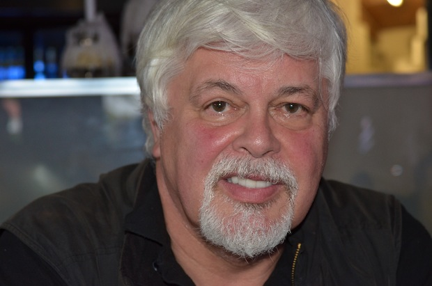 paul watson 893k followers, 89 following, 255 posts - see instagram photos and videos  from captain paul watson (@captainpaulwatson.
