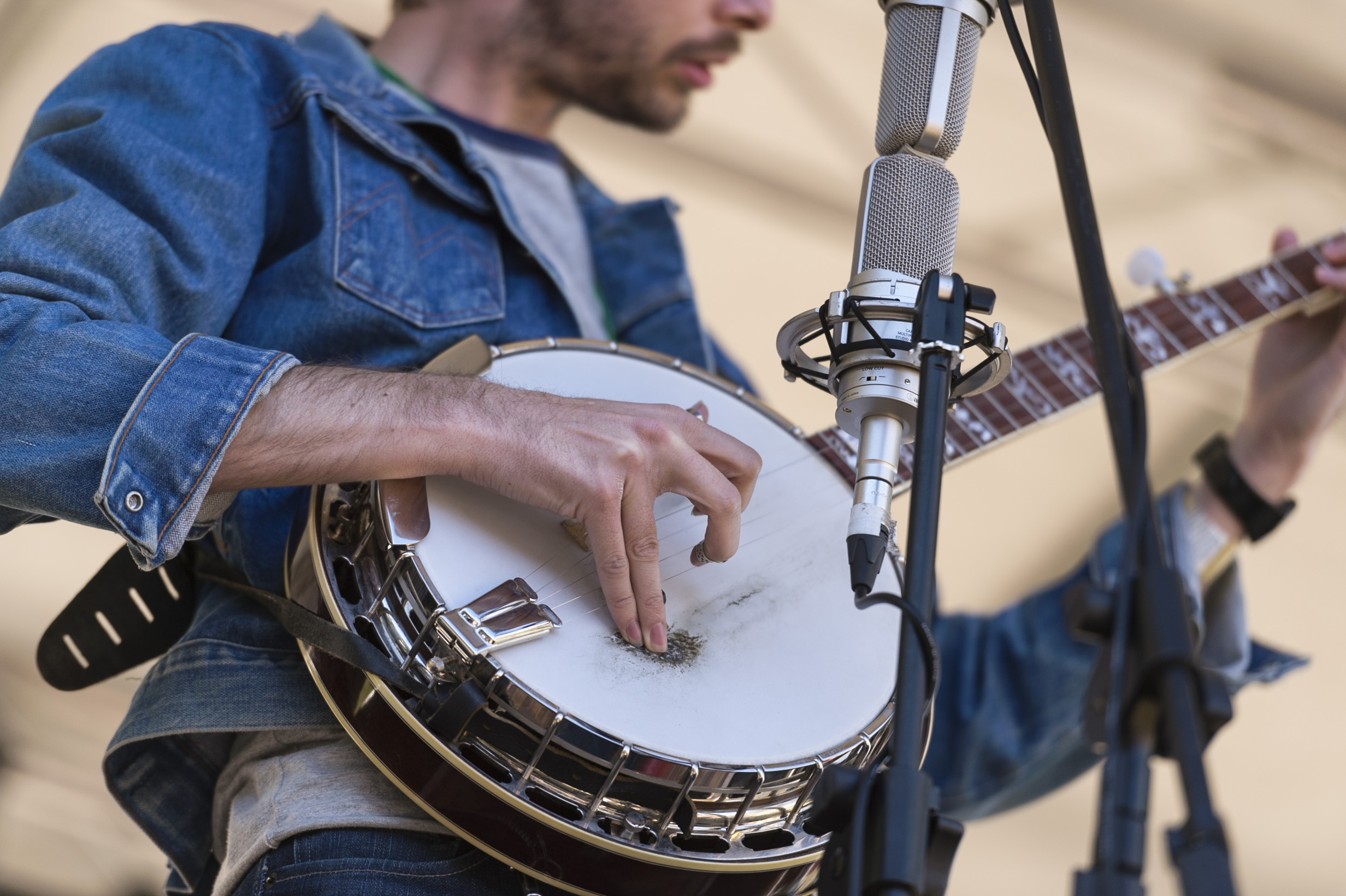 Banjo_image by Lyn McCarthy at Niche Pictures 2014